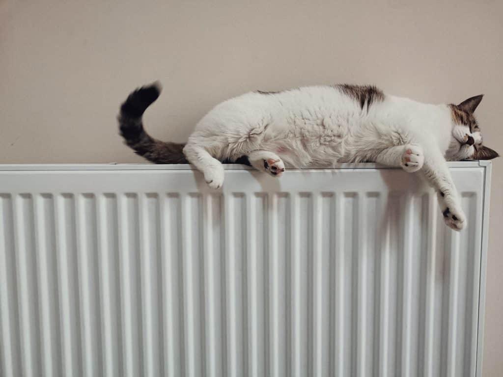 radiateur solaire